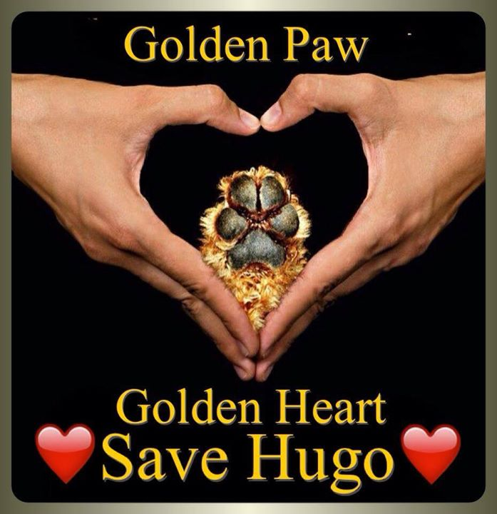 Hugo Doesn't Deserve To Die, Though Neither Do Countless Other Animals