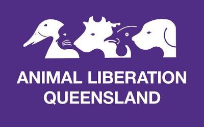 Animal Liberation Queensland – Evaluation