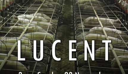 The Truth About Lucent - AusVegan.com.au